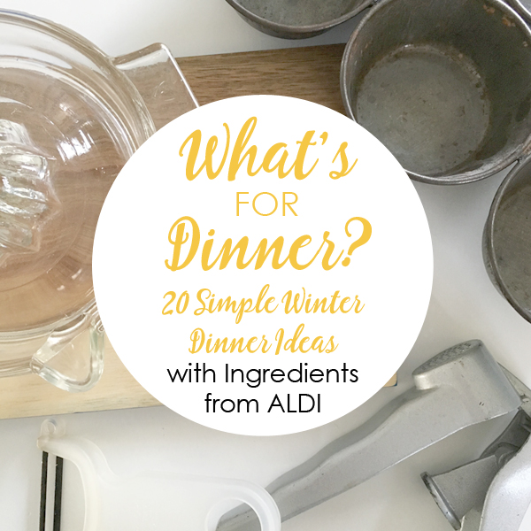 20 Easy Family Dinner Entrees from Aldi Items